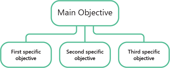 The general objective